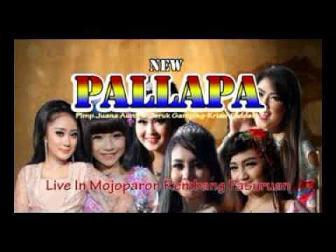 Gerry Mahesa - Sifana NEW PALLAPA terbaru live in MOJOPARON 04 November 2016