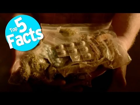 Top 5 Facts: Tripping Balls