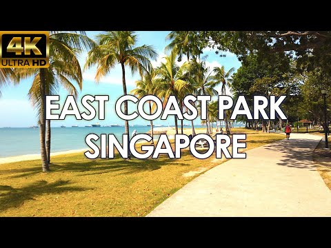 Huge Squishy Package from Singapore from YouTube · Duration:  12 minutes 59 seconds