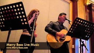 Merry Bees Live Music - Now & Forever (cover by John Lye)