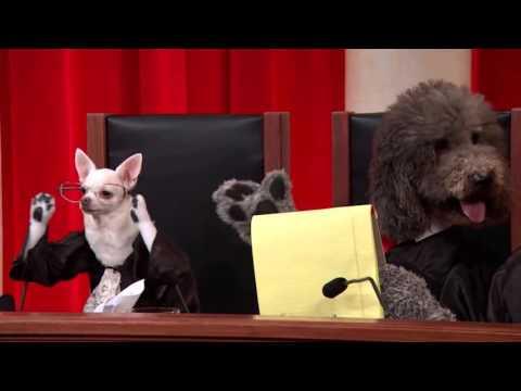 Chadbourne and Parke LLP v. Troice: Oral Argument - October 07, 2013
