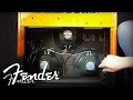 How To | Changing Amplifier Speakers | Fender