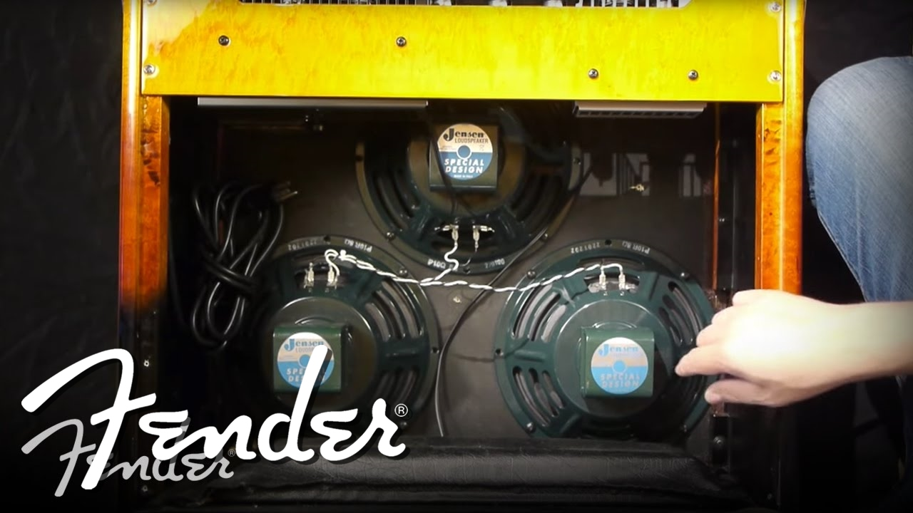 medium resolution of how to changing amplifier speakers fender
