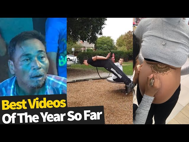 50 Best Viral Videos Of The Year, So Far (2019)