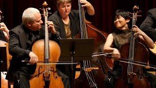 VIVALDI - Concerto for Two Cellos – René Schiffer, Mimé Brinkmann – Apollo's Fire