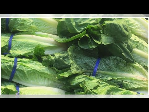 E. coli outbreak: CDC says if you don't know source of romaine lettuce, don't eat it