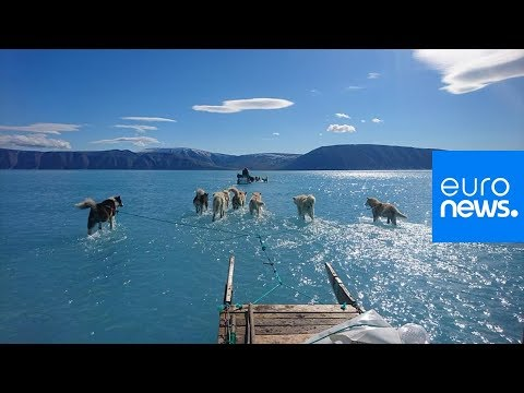 Euronews:TheCube | The viral image that illustrates the scale of melting ice in Greenland