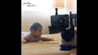 Protistas - Nefertiti (disco completo)