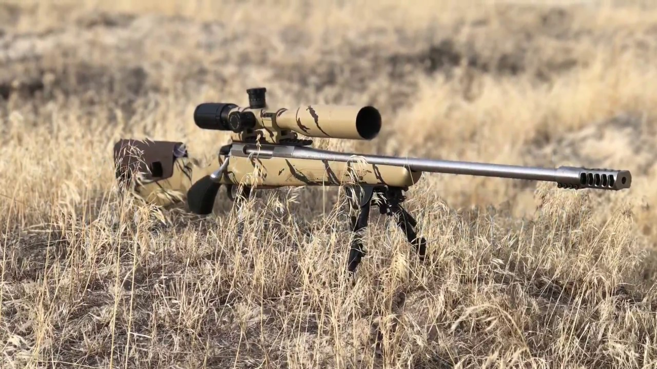 The Tikka T3x Review Stainless Lite 243, Best factory rifle for less than  $1,000!