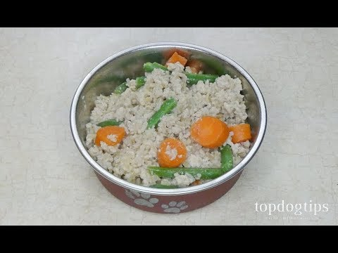 homemade-food-for-diabetic-dogs-(cheap-and-easy-to-make)