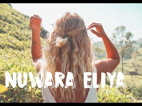 NUWARA ELIYA, SRI LANKA - WELCOME TO TEA PARADISE 🌿  VLOG #38