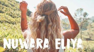 NUWARA ELIYA, SRI LANKA - WELCOME TO TEA PARADISE 🌿| VLOG #38