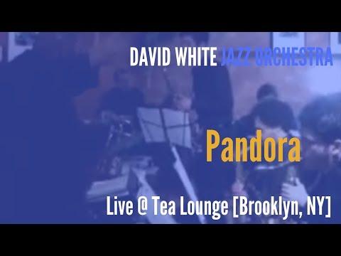🎵 David White Jazz Orchestra - Pandora - (live @ Tea Lounge)