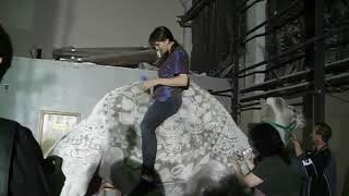 Последние приготовления: Верблюд перед съемками | Аренда - 8 965 380-13-11