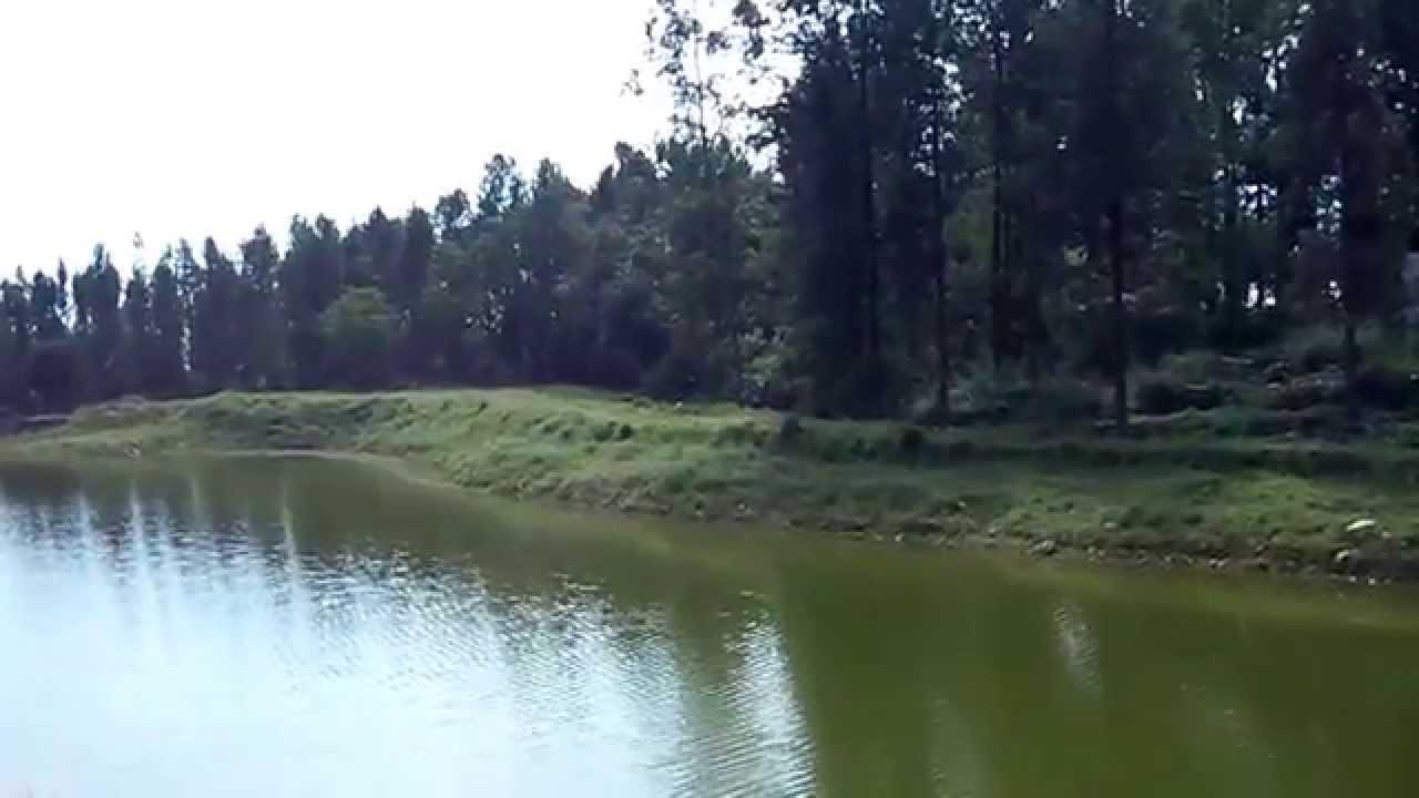 sirumalai lake - dry season, sirumalai, Dindigul by ...
