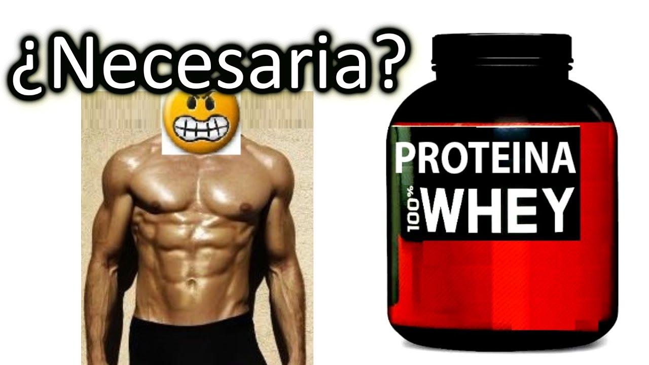 Los 20 aminoacidos que forman las protein as en polvo para bajar de peso