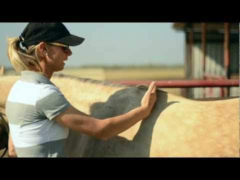 Sherry Cervi Explains Saddle F...