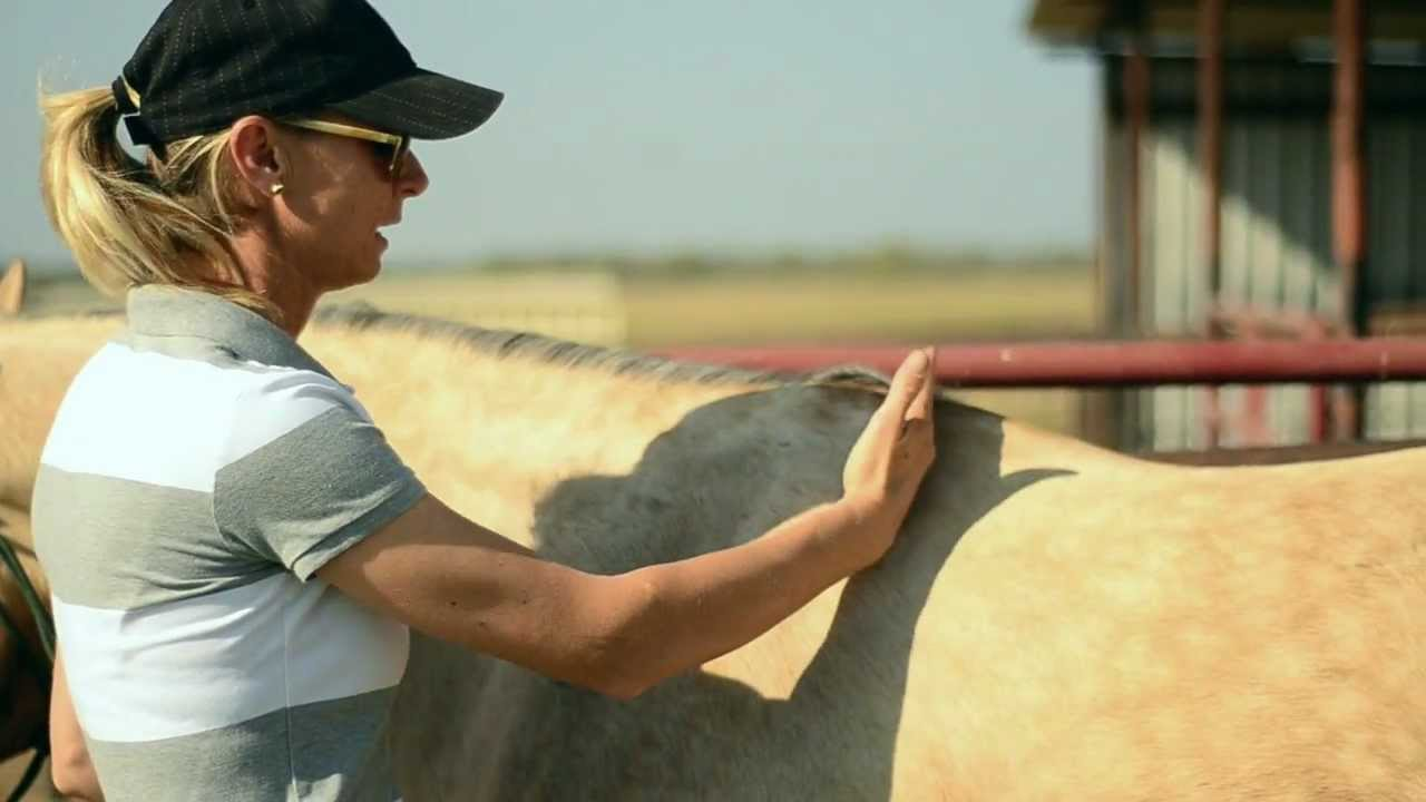 A Saddle Fitting Adventure with NFR Barrel Racer, Tana