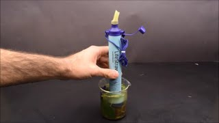 LifeStraw Filtered Dirty Water Under the Microscope