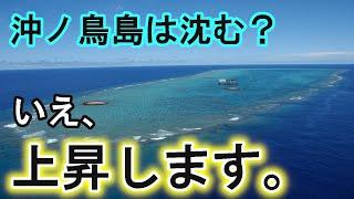 沖ノ鳥島復活計画「サンゴ増殖プロジェクト」についてまとめてみた!