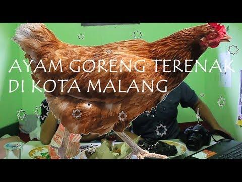 ayam-goreng-terenak-di-kota-malang---dailyschool-indonesia