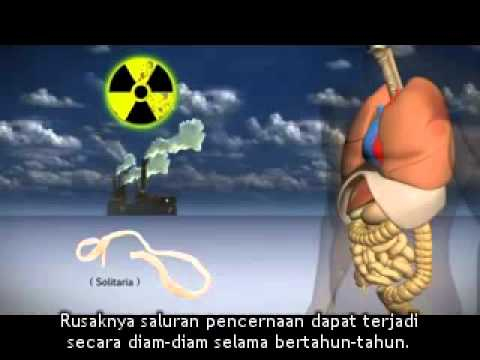 Unicity Clear Start - Colon Cleansing System (with Bahasa Indonesia Subtitles).mp4