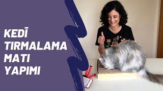 Evde kedi oyuncağı yapımı: Kedi tırmalama tahtası, DIY