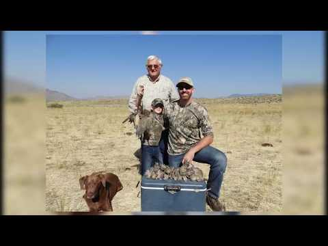 Dove Hunting On BLM Califronia-managed Public Lands