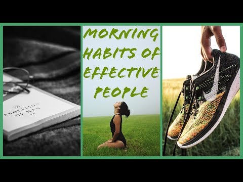 5 Morning Habits of Highly Successful People