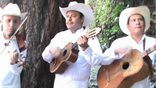 Trío Guardianes de la Huasteca - La Petenera