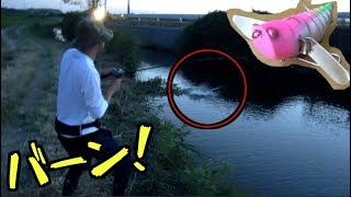 今回は反則級ルアーの実釣編になります。フィールドは週末の霞ヶ浦水系...