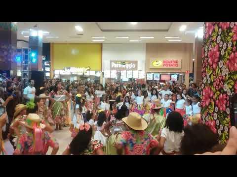 SIRIRI - SEMENTE RIBEIRINHA - SHOPPING 3 AMÉRICAS - 2019