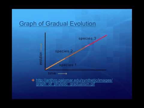 Gradualism v Punctuated Equalibrium