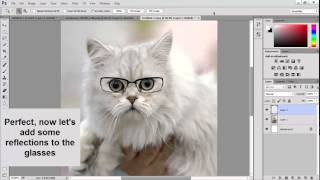 Making A Cat Wear Glasses   Photoshop Tutorial