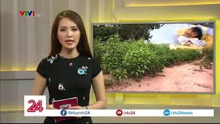Xác định danh tính mẹ của bé trai sơ sinh bị chôn sống ở Bình Thuận | VTV24
