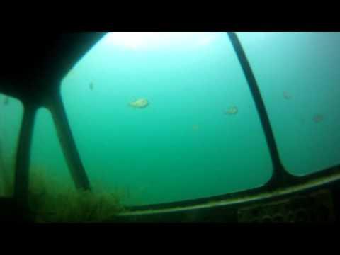 scuba diving lakeview quarrie lancaster ohio GOPR0017.MP4