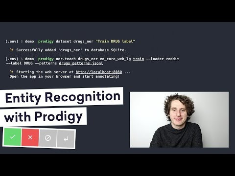 TRAINING A NEW ENTITY TYPE with Prodigy – annotation powered by active learning