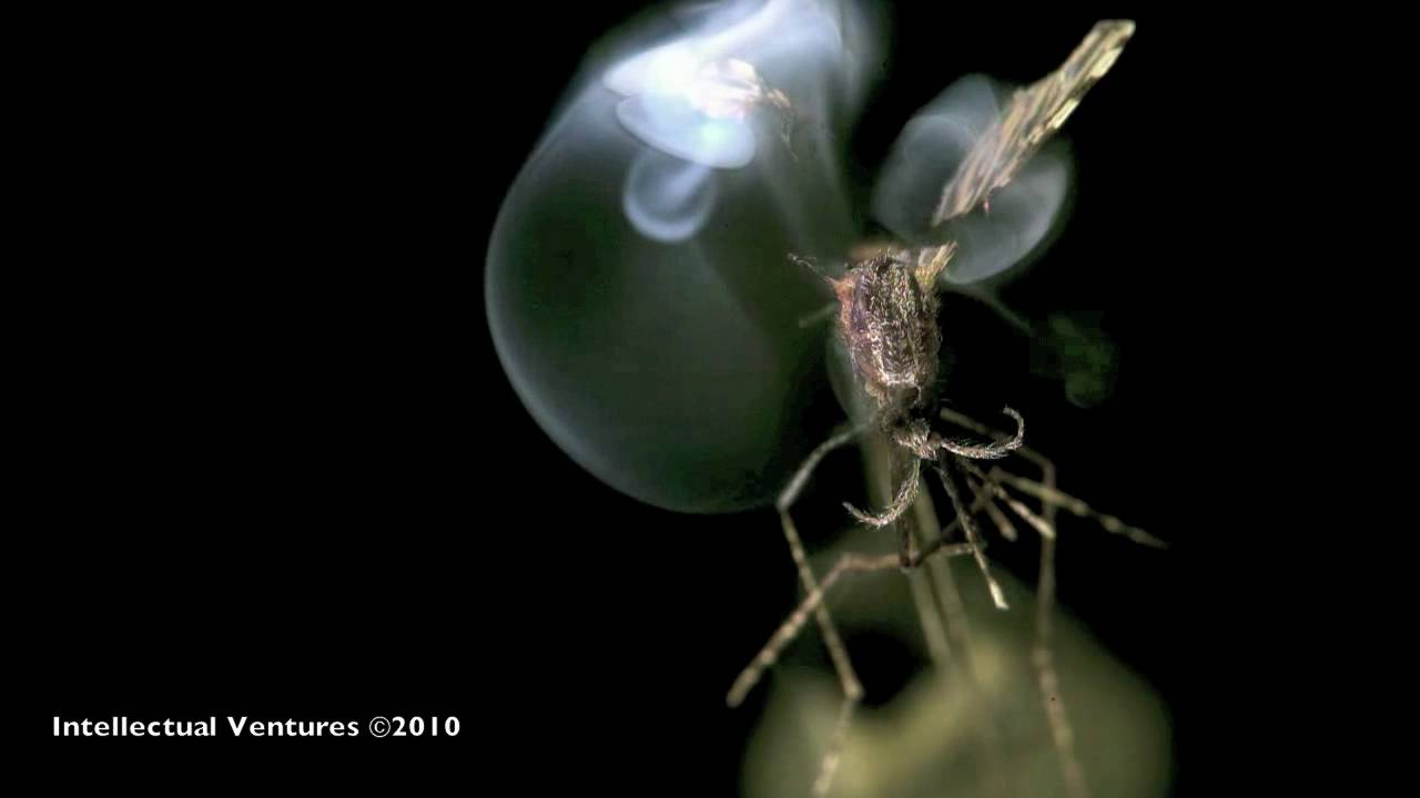 Intellectual Ventures: Mosquito Laser Shootdown Sequence