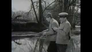 louis de funès , bourvil.....à la pêche