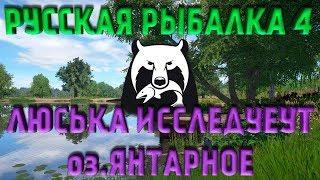 ТУРНИР ЯНТАРНОЕ Учимся ловить карпа Девушка играет в Русская рыбалка 4