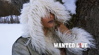 Life in a Northern Town (Dream Academy Cover) - Celest & The Torontonians | WANTED! LIVE