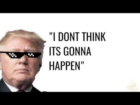 THE DONALD TRUMP SONG