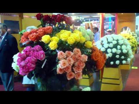Свежая поставка цветов в DariRoza - YouTube