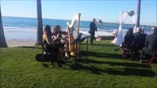 Republic of Music   String Duo Live Video