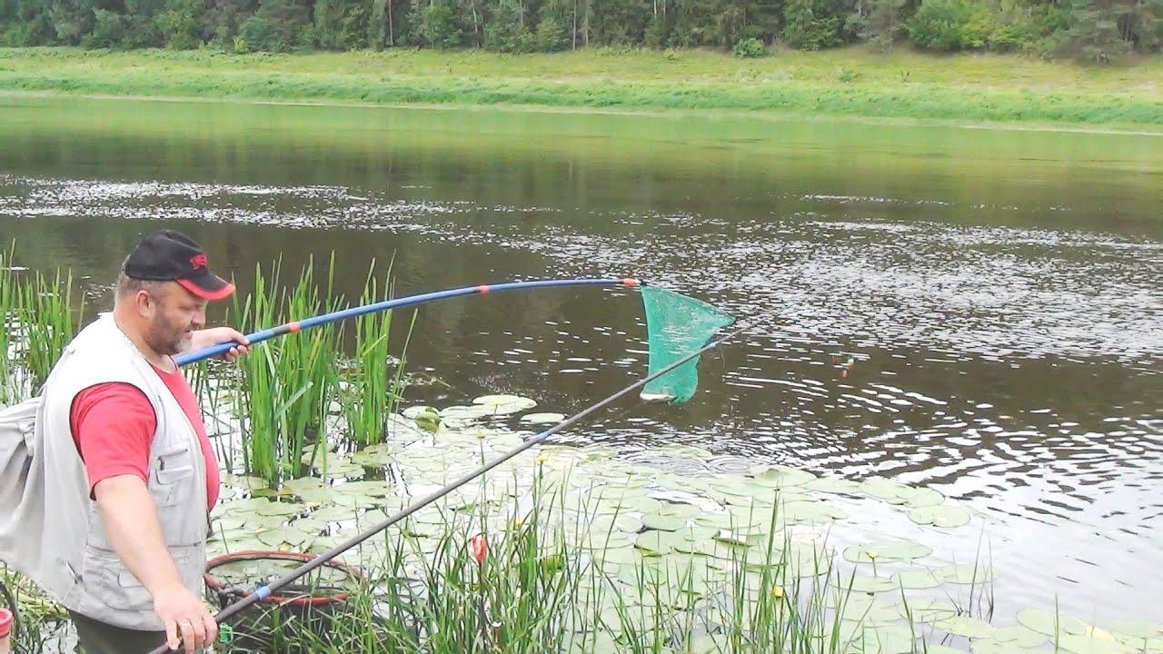 летняя рыбалка на поплавок 2016 видео