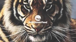 PANG! - Eye Of The Tiger