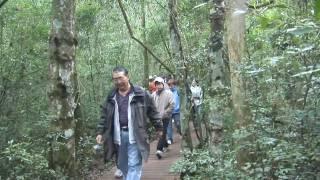 South America: Iguassu Falls