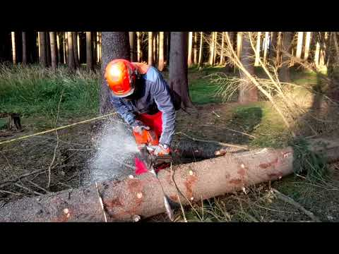Husqvarna 562XP Garden and Forest Original YouTube Video