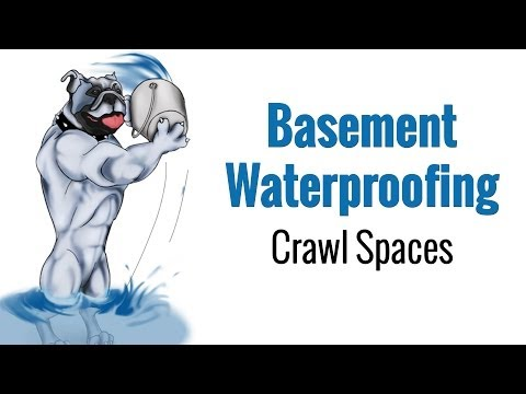 Crawl E Waterproofing Services