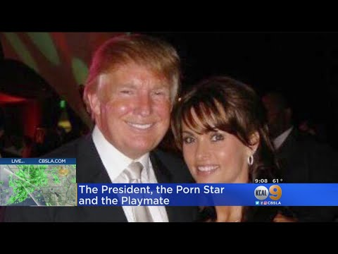 Porn Star, Playmate And 'Apprentice' All Increase Claims Against Trump